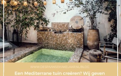 Een Mediterrane tuin creëren? Wij geven jou een aantal tips en ideeën!